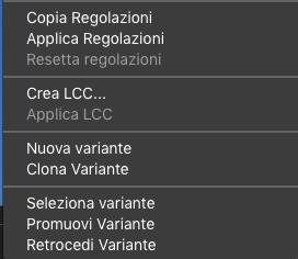 C1_workflow_02