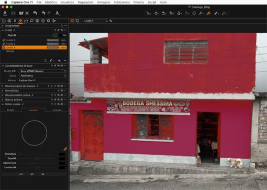 C1_editorcolore_12small